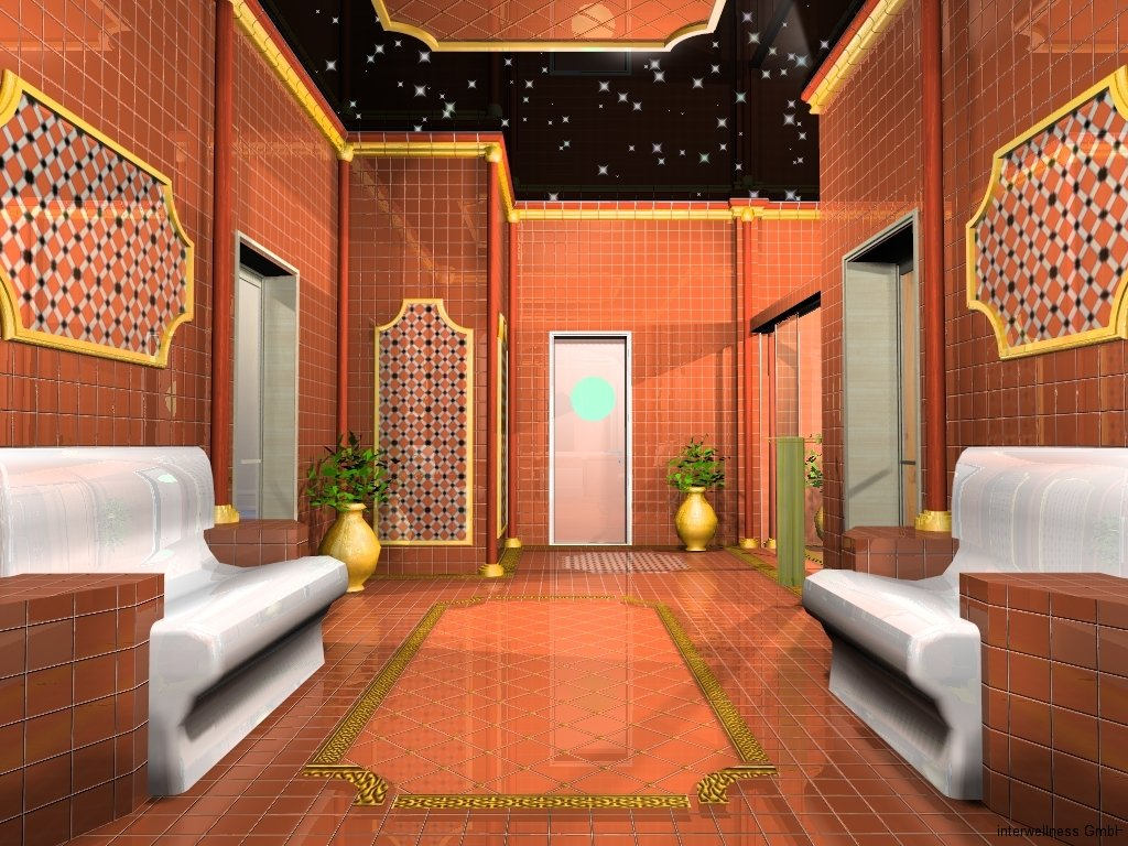 Sauna Dampfbad und Duschbereich